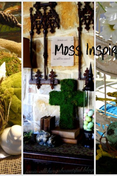 3 Moss Home Decor Ideas to Help you Embrace Spring