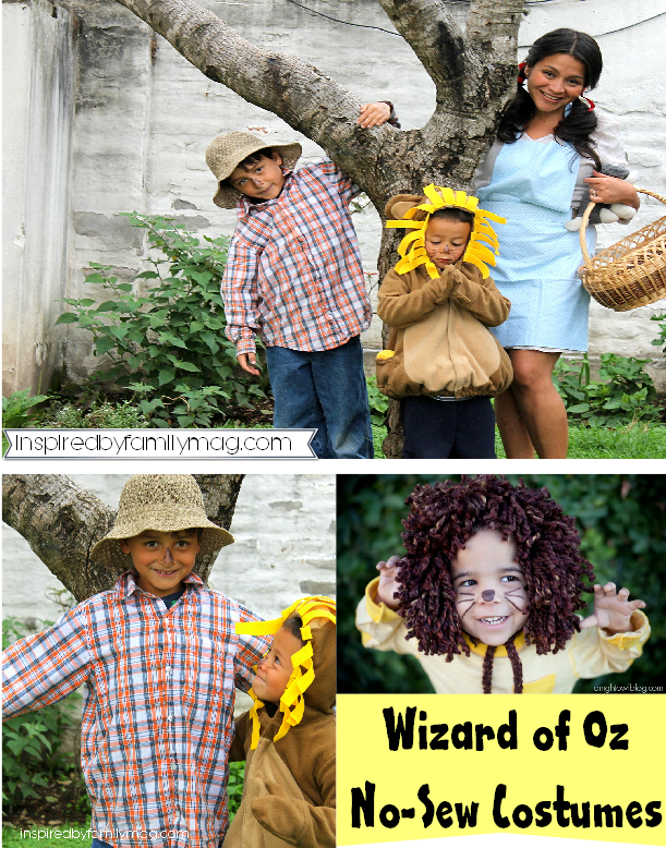 no sew wizard of oz costumes