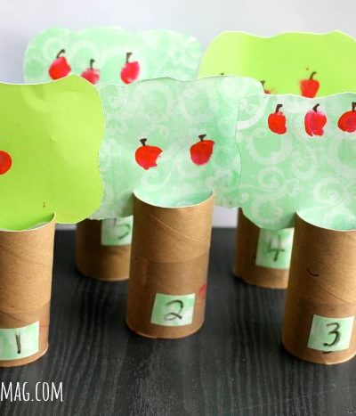 Apple TP Tube Craft