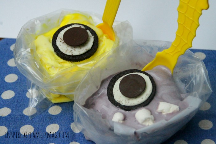 Summer Fun: Ice Cream in a Bag