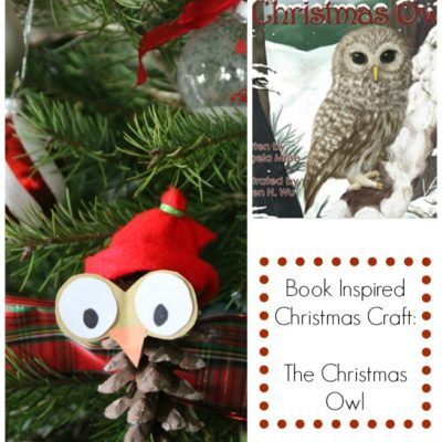 A One of a Kind Children's Christmas Book Story & Owl Ornament
